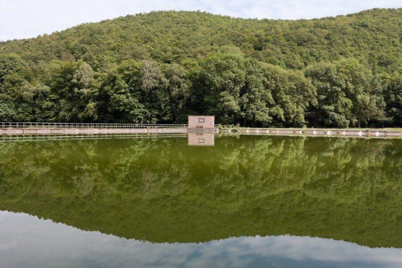 Ein Teich, indem sich der Wald spiegelt